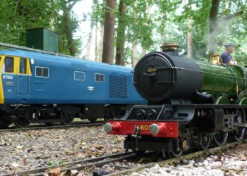 two trains at Pinewood Miniature railway